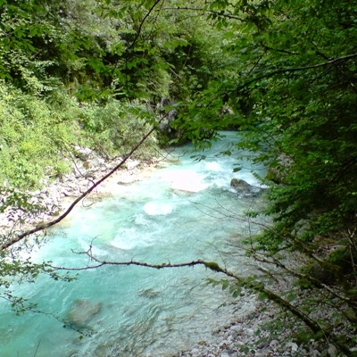WWF Warns of Damage Done to Bulgarian Rivers, Also Due to HPPs