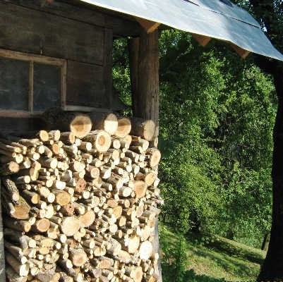 Občina Semič pripravlja zgleden projekt ogrevanja z biomaso
