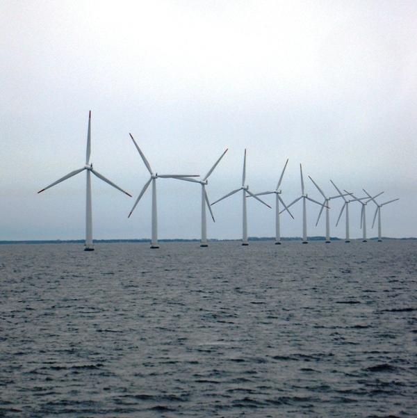 Kako velik del trga bo zavzela vetrna energija?
