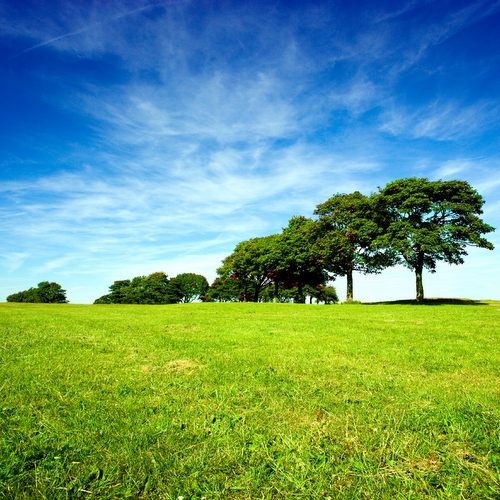 Environmental responsibility needs embracing by the corporate world