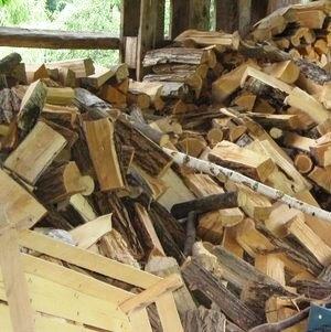 Za prihodnost gozdno-lesnega sektorja v Sloveniji ključna bolj povezana veriga