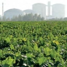 EK sprejela delegiran akt o trajnostnih merilih za biogoriva