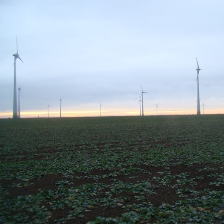 Austria's Burgenland province to reach energy independence with renewables
