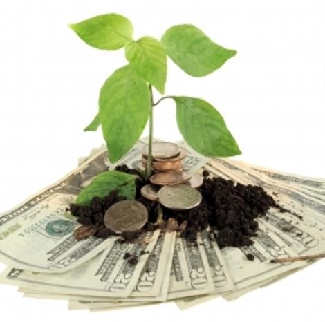 Za financiranje zelenih projektov poiščite posebne inštrumente