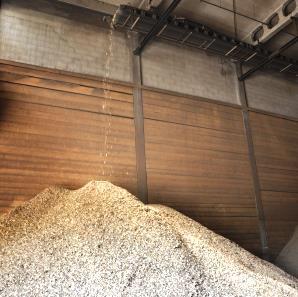 Kočevje bo s pomočjo Italijanov gradilo kogeneracijo na lesno biomaso