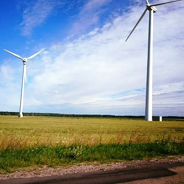 European Green Utilities Outperforming Their Less Green Rivals in Current Downturn