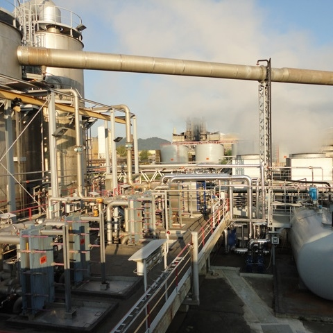Cinkarna Celje: From Energy-Intensive to Innovative Energy Company