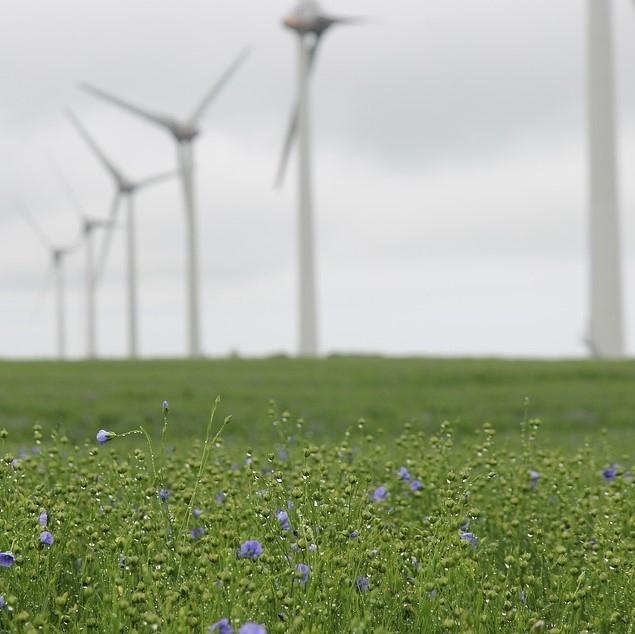 GIZ vetrne energije vstopilo v WindEurope; Grobelnikova o mitih