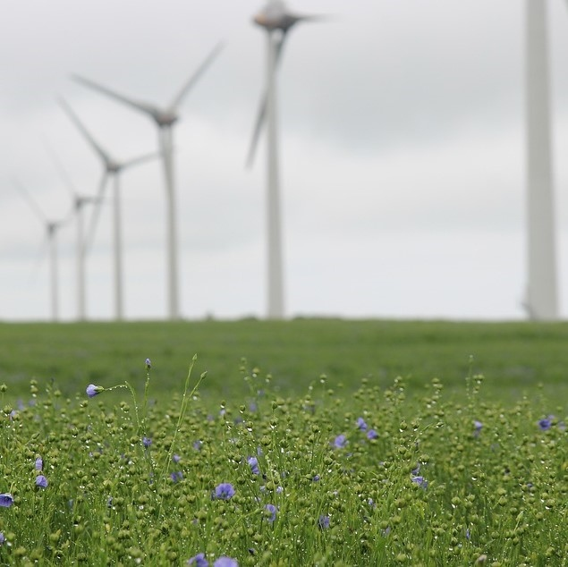 Pivška občina naklonjena vetrnim elektrarnam
