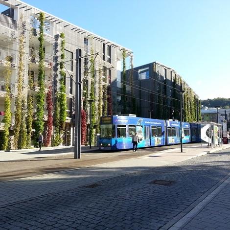 Freiburg – zgled trajnostnega mestnega življenja