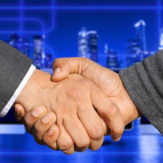 Borzenova naloga je vzpostaviti okolje za uspešno delovanje elektrogospodarstva