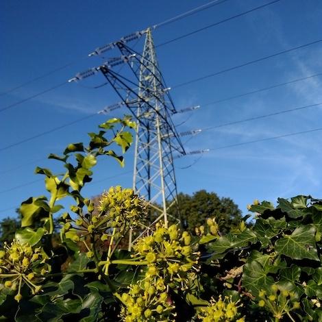 Prevzem električne energije v Sloveniji leta 2018 znašal 23.933 GWh