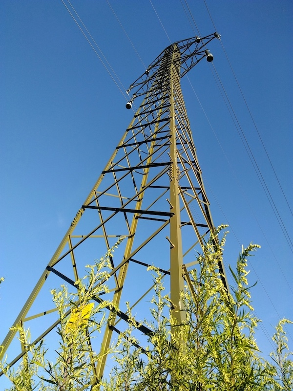Serbian Electricity Losses Amount to Around EUR 200m Annually