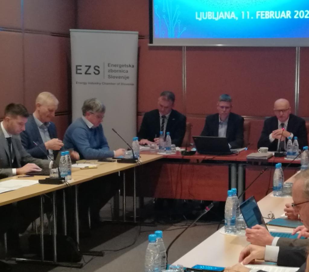 EZS: Določeni viri energije iz NEPN-a ne bi smeli biti izvzeti