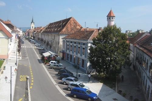 Petrol do posla energetske prenove občinskih stavb v Brežicah