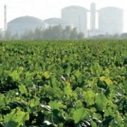 biogoriv   naslovna