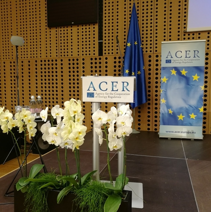 ACER on Balancing Rules: Bulgaria Makes Some Progress, Romania No Real Progress